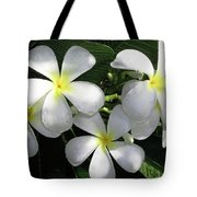 F1 Plumeria Frangipani Flowers Hawaii Tote Bag