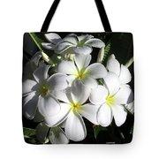 F13-plumeria Flowers Tote Bag