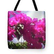F15 Bougainvilleas Flowers Tote Bag
