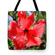 F20 Red Hibiscus Tote Bag
