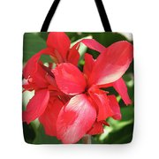 F22 Cannas Flower Tote Bag