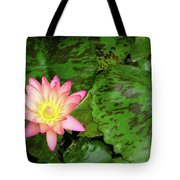 F6 Water Lily Tote Bag