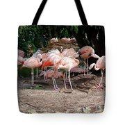 Fabulous Flamingos Tote Bag