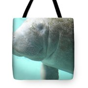 Face Of A Manatee Swimming Underwater Tote Bag