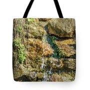 Face Of The Mountain Stream Tote Bag