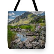 Face Of Tryfan Tote Bag