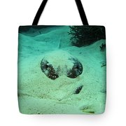Face Off With Stingray Tote Bag