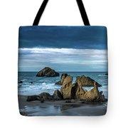 Face Rock Beach  Tote Bag