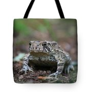 Face To Face With A Fowler Toad  Tote Bag