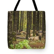 Faces In The Woods Tote Bag