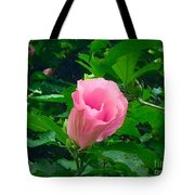 Facing Forward  Tote Bag