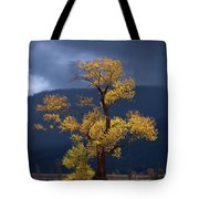 Facing The Storm Tote Bag
