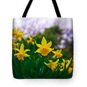 Daffodils Sky Tote Bag
