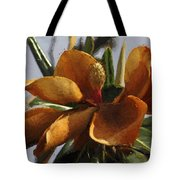 Faded Beauty - Flower - Magnolia Tote Bag