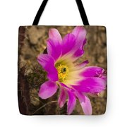 Faded Cactus Beauty Tote Bag