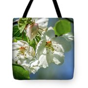 Fading Beauties Tote Bag