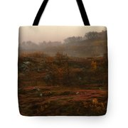 Fading Fall Colors II Tote Bag