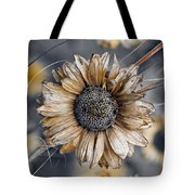 Fading Oxeye Tote Bag