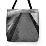 Fading Winter Two  Tote Bag