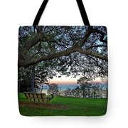 Fairhope Swing On The Bay Tote Bag