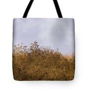 Fairmont  Ridge Tote Bag