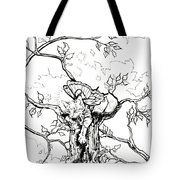 Fairy Cat Climber Tote Bag