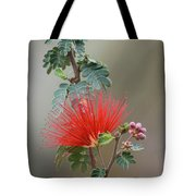Fairy Duster-img_488917 Tote Bag
