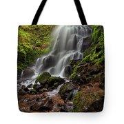 Fairy Falls In Columbia Gorge Tote Bag