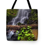Fairy Falls In Spring Tote Bag