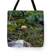 Fairy Home Tote Bag
