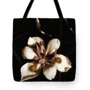 Fairy Iris. A Butterfly Landed On My Tote Bag