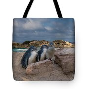 Fairy Penguins Tote Bag by Elaine Teague