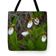 Fairy Slippers Tote Bag