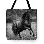 Fairy Tale Stallion Leaps Tote Bag