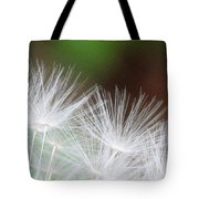 Fairy Wings Tote Bag