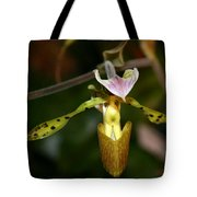 Fairy Wings Tote Bag