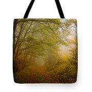 Fairy Wood Tote Bag by Evgeni Dinev
