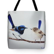 Fairy Wrens - I Love You Too  Tote Bag