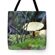 Fairy's Umbrella Tote Bag