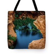 Falcon And The Desert... Tote Bag