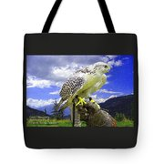 Falcon Being Trained H A Tote Bag