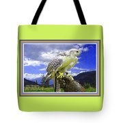 Falcon Being Trained H A With Decorative Ornate Printed Frame. Tote Bag