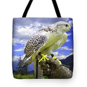 Falcon Being Trained H B Tote Bag