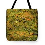 Fall #2 Tote Bag