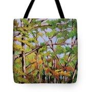Fall 2 Tote Bag
