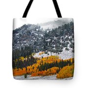 Fall And Winter Collide  Tote Bag