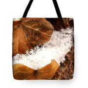 Fall And Winter Tote Bag