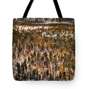 Fall And Winter On The Same Day Tote Bag