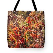 Fall Around  Tote Bag