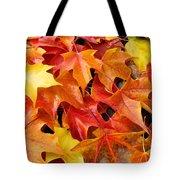 Fall Art Prints Red Orange Yellow Autumn Leaves Baslee Troutman Tote Bag